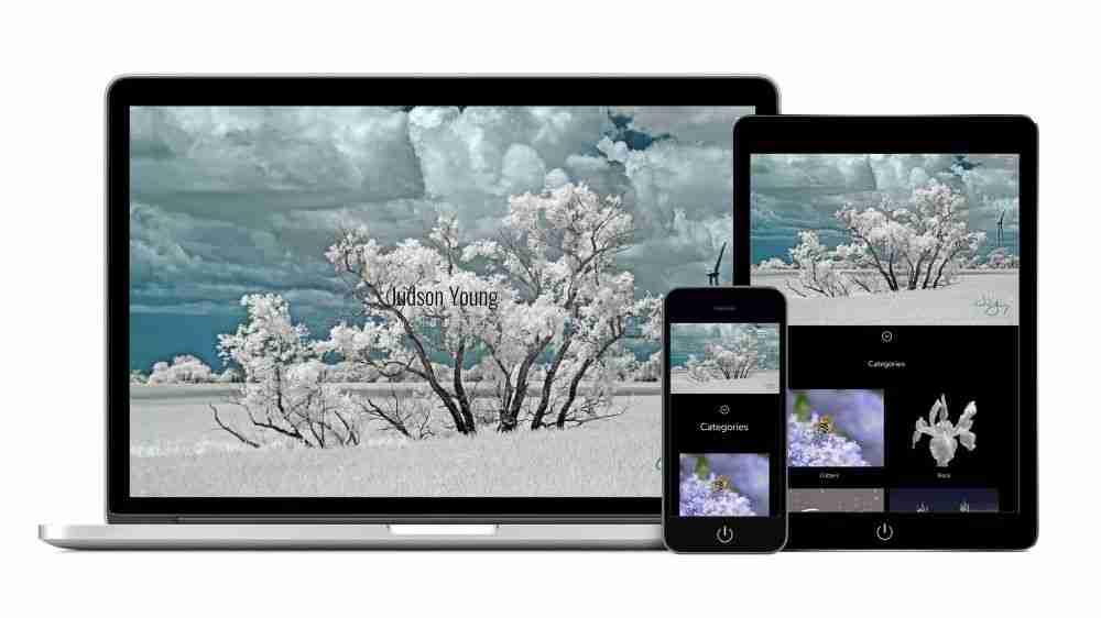 artistic web design service